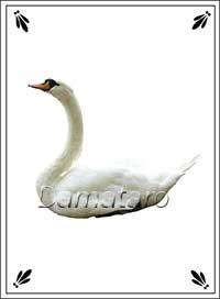 Екатерининское гадание Лебедь